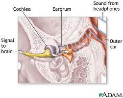 Acoustic Trauma - Causes, Symptoms, Diagnosis and Treatment